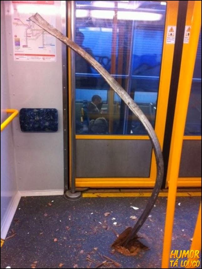 trauma de andar de trem...