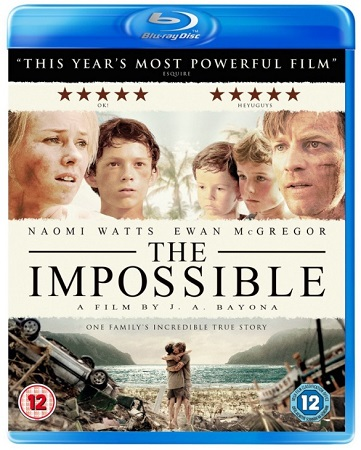 Poster Of The Impossible 2012 Dual Audio  300MB   Free Download Watch Online