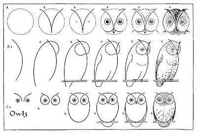 How to Draw Owls Drawing