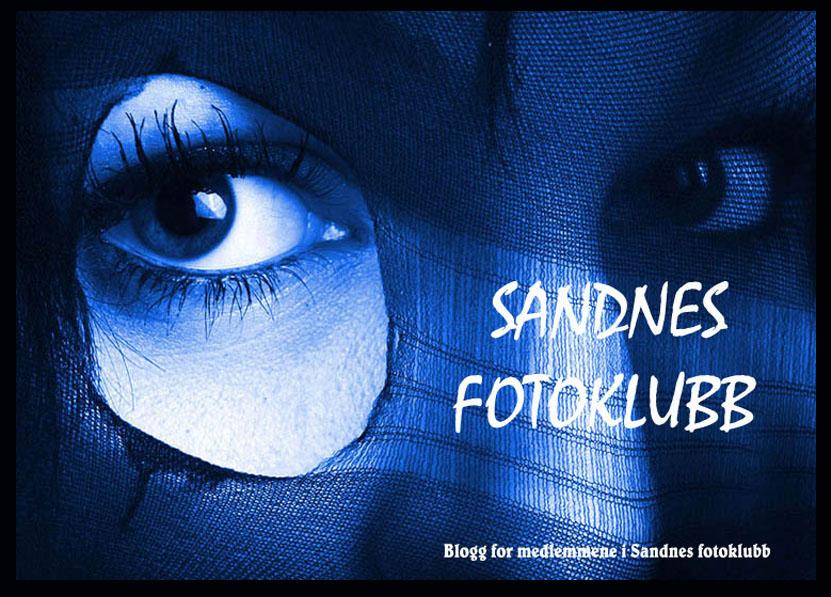 sandnes fotoklubb