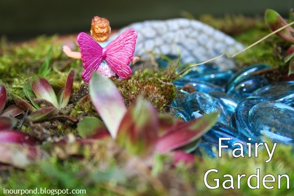 In Our Pond Fairy Garden Small World Play