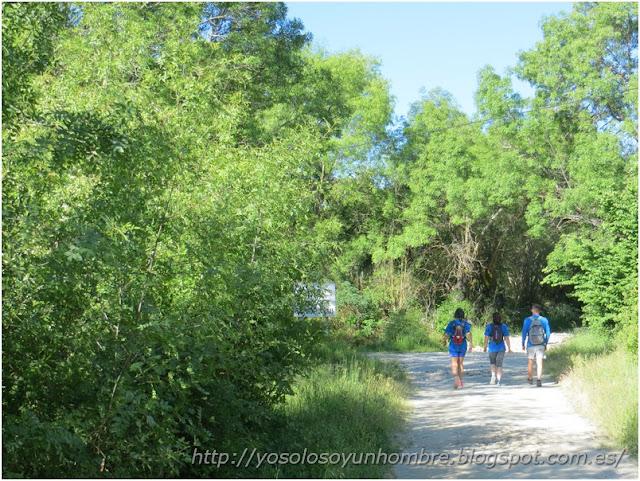 Andando por el camino natural del Valle de Lozoya