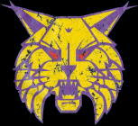 Webster City Lynx