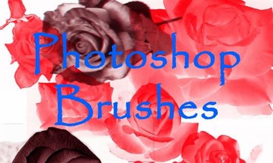 Rose brushes Photoshop