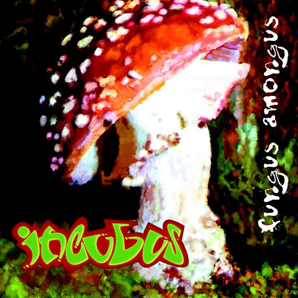 http://1.bp.blogspot.com/-DB0fYbHL60Y/Tcc0Opil1MI/AAAAAAAABIE/HTxdi1Fi4jw/s1600/fungusamongus.jpg