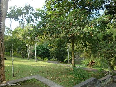 Taman Ayun Temple Bali Photo 13
