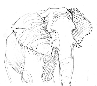 Drawings of Cartoon Elephants