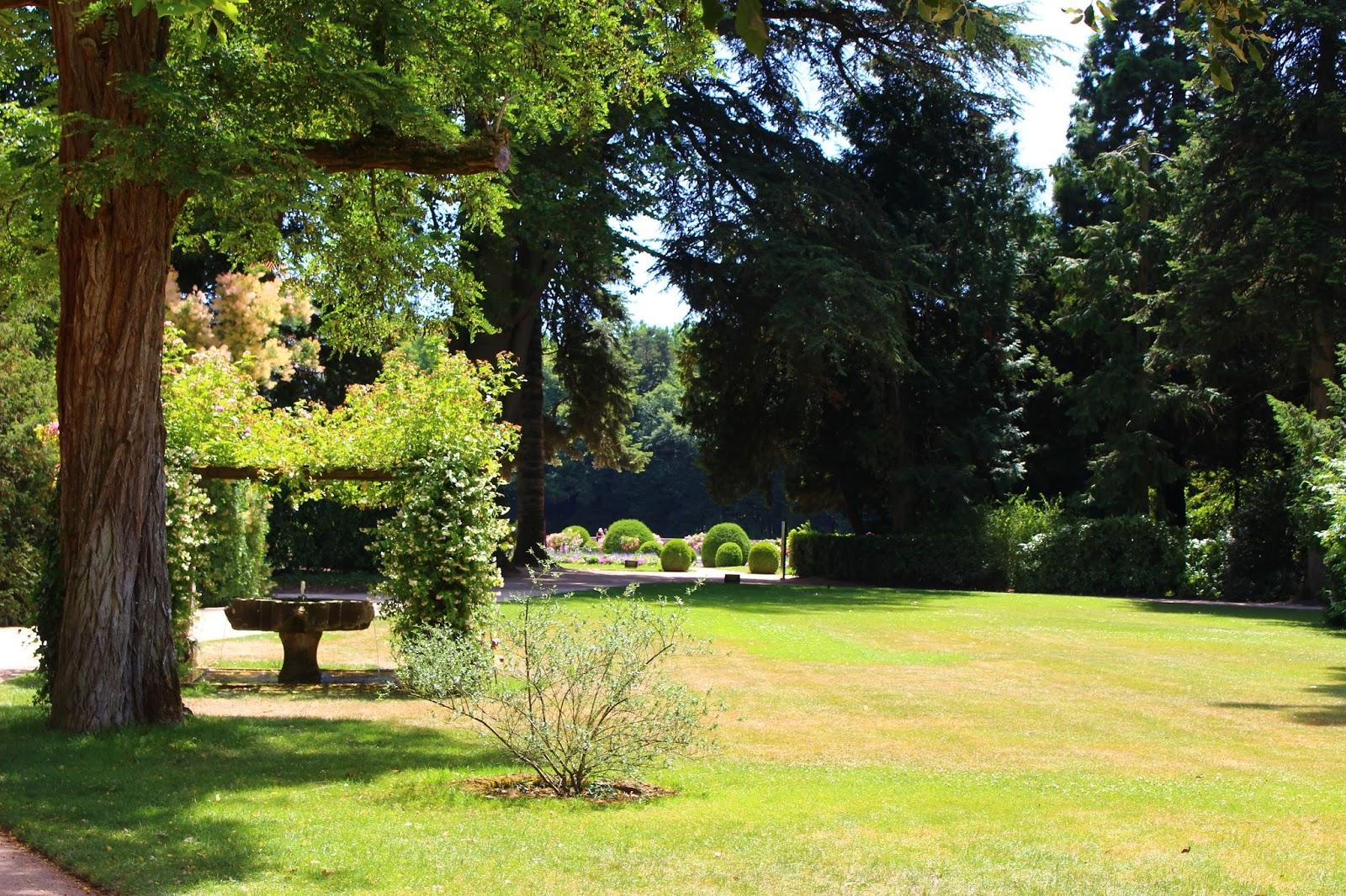 Roses du jardin ch neland jardin vert au ch teau de for Jardin du pic vert
