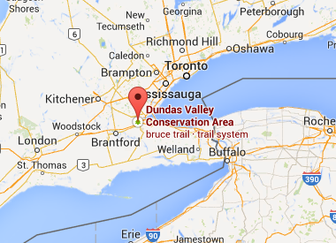 https://www.google.com/maps/place/Dundas+Valley+Conservation+Area/@43.1931127,-79.9724248,12z/data=!4m2!3m1!1s0x0:0x3a19ac2fb4c4c2ac