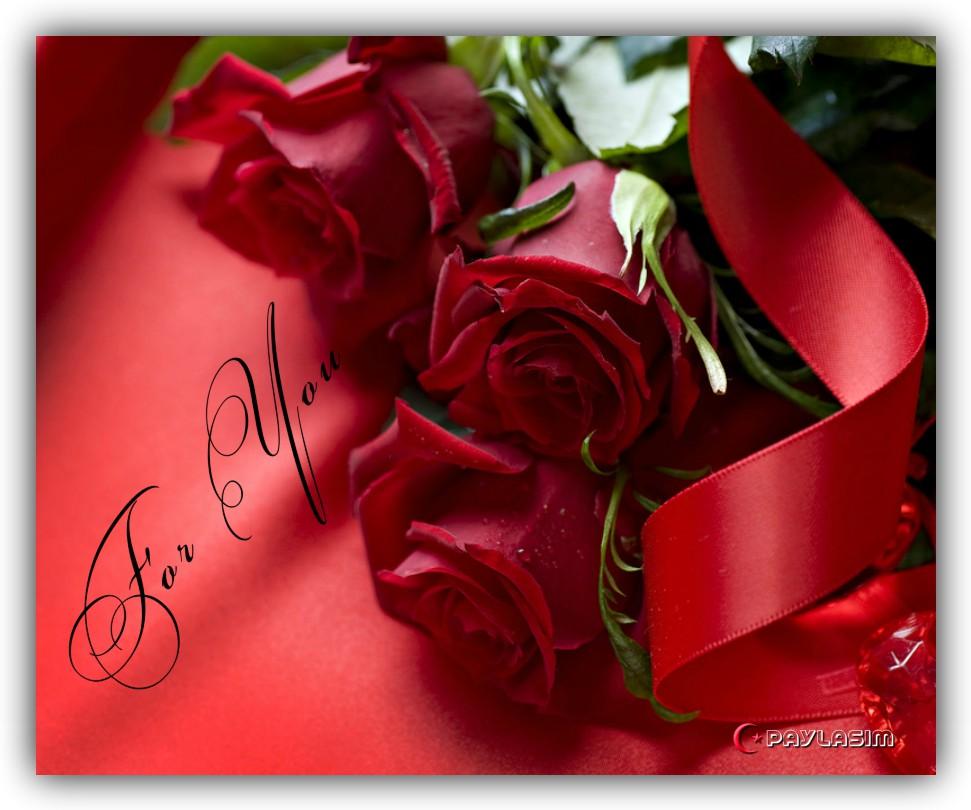 Фото открытки роз в хорошем качестве