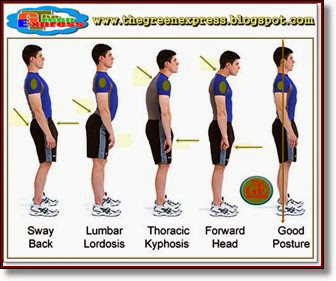 Importance of Good Posture or the Value of Good Posture