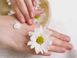bàn tay mền mại