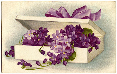 Vintage Image Violets Flowers