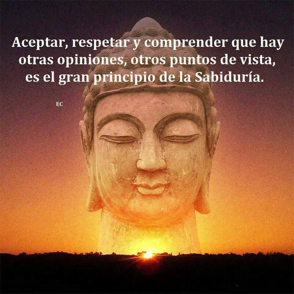 sabiduria, frases, buda, opiniones