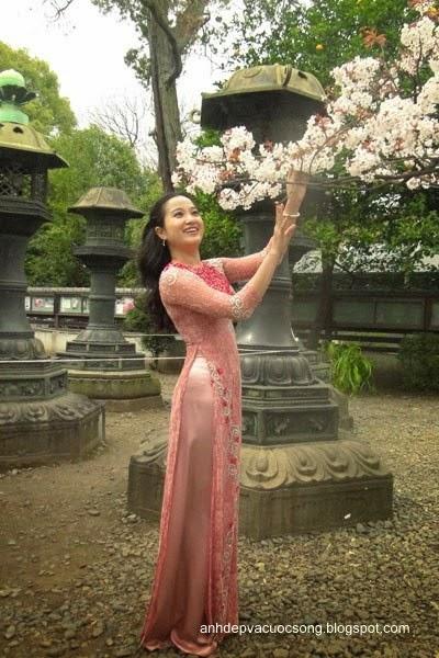 Mc Hồng Phượng ngẩn ngơ trước hoa anh đào Nhật Bản 8