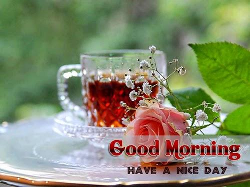 Good Morning Sunday Winter : Good morning wallpaper winter