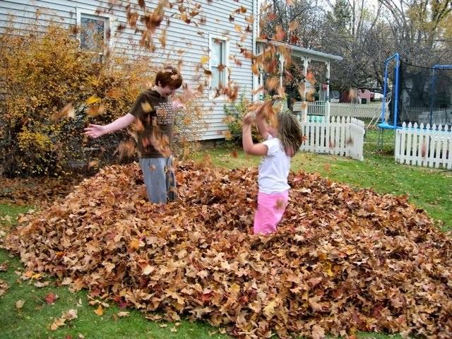 Leaf Pile is FUN