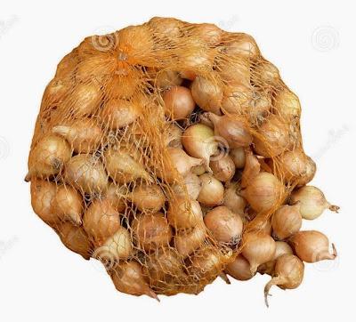 City Girl PT Onion Onion