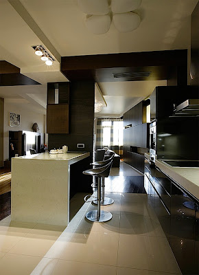 Contemporary Apartment Design Pictures