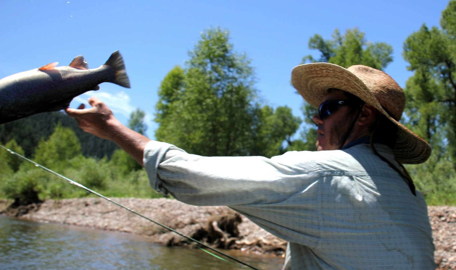 Colorado fly fishing reports tip of the week for Colorado fly fishing reports