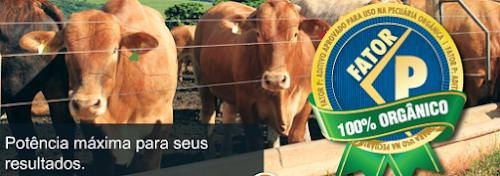 Empresa de nutrição animal conquista reconhecimento do IBD Certificações pela qualidade de seus produtos orgânicos
