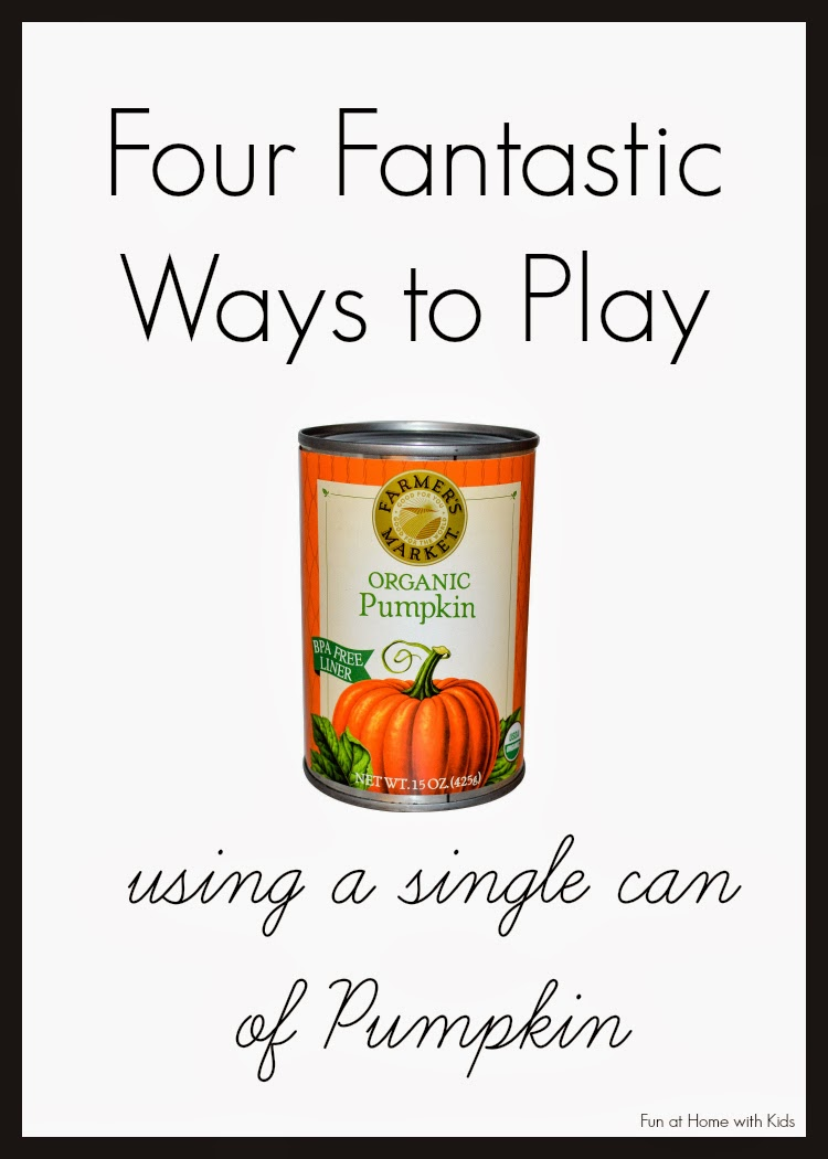 "A ""recipe"" for the perfect fall day that involves playing with one can of pumpkin!  Four activities that are fun for all ages from Fun at Home with Kids"