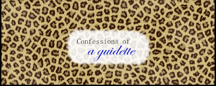 Confessions of a guidette