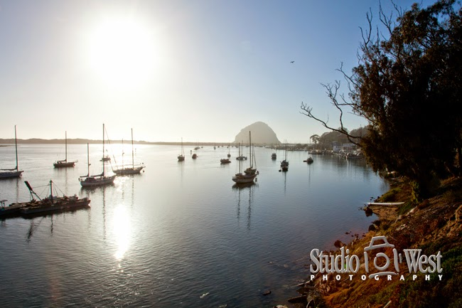 The Inn at Morro Bay - San Luis Obispo Wedding Photographer - Morro Bay Wedding Photographer - studio 101 west