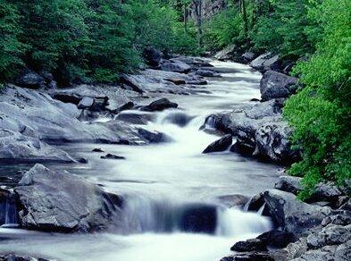 Di sidatulmuntaha, sungai furat dan sungai nil disebut sebagai sungai