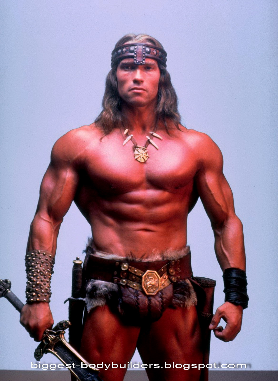 Conan the Destroyer in 1984Red Sonja Arnold Schwarzenegger