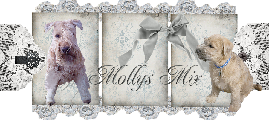 Mollys Mix