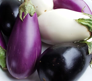 eggplant%2Bcolors.jpg