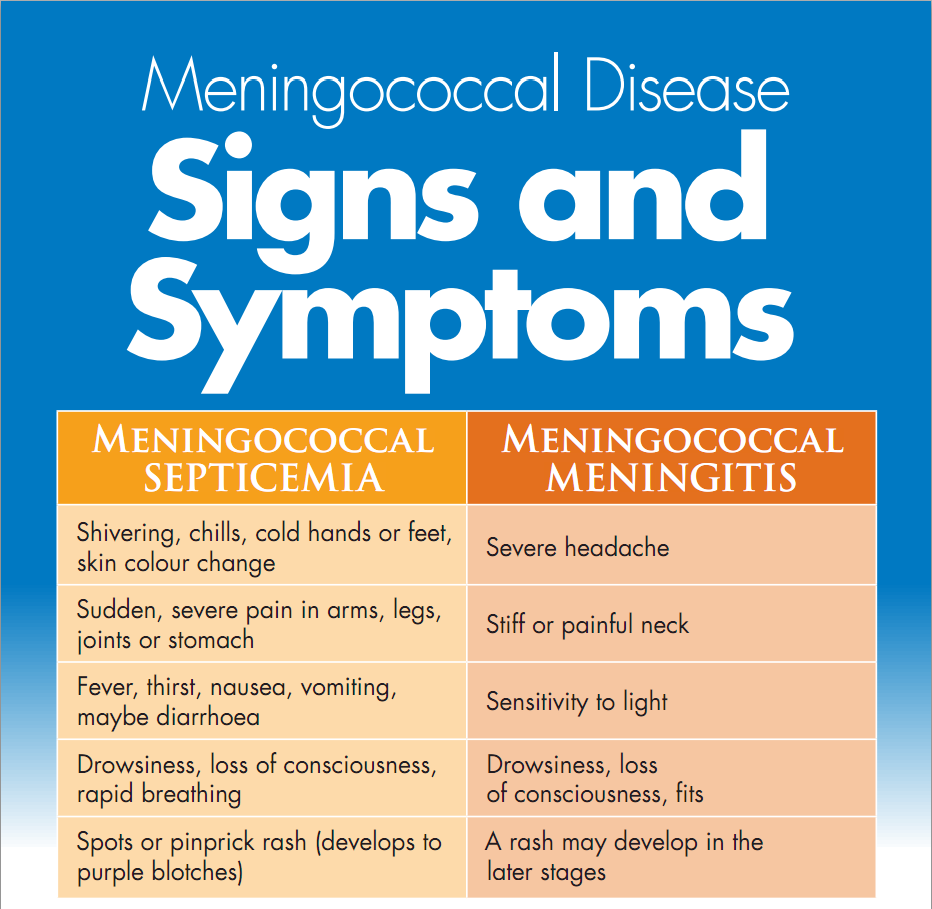 Meningococcemia signs and symptoms
