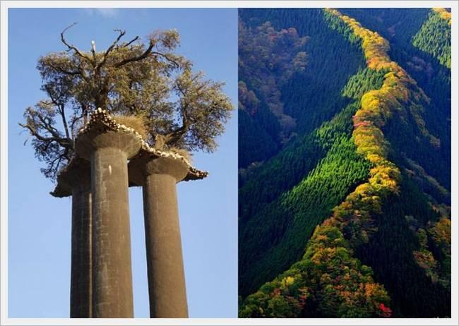 scenic views of beautiful world