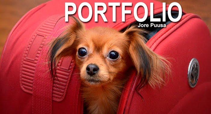 Jore Puusa portfolio ja cv