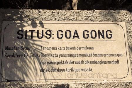 Situs Goa Gong Pacitan