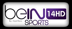 مشاهدة قناة بي ان سبورت اتش دي HD14 الفرنسية البث الحي المباشر اون لاين مجانا Watch beIN Sports HD14 French Online Channel TV
