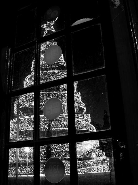 árvore, natal, boas_festas, fotografia_preto_branco, christmas, b&w_photo