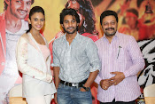 Rough movie audio success meet-thumbnail-12