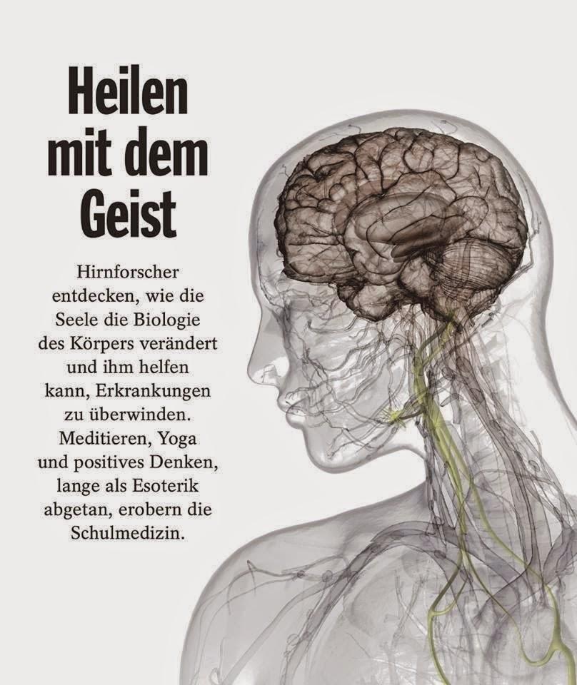Homo Holisticus: Hirnforscher entdecken, wie die Seele die Biologie ...
