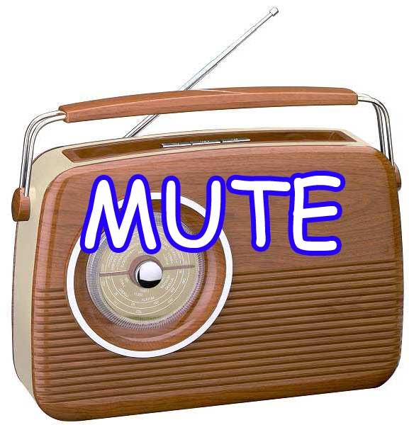 http://experimentocasero.blogspot.com/2014/09/mute-casero-para-radios.html