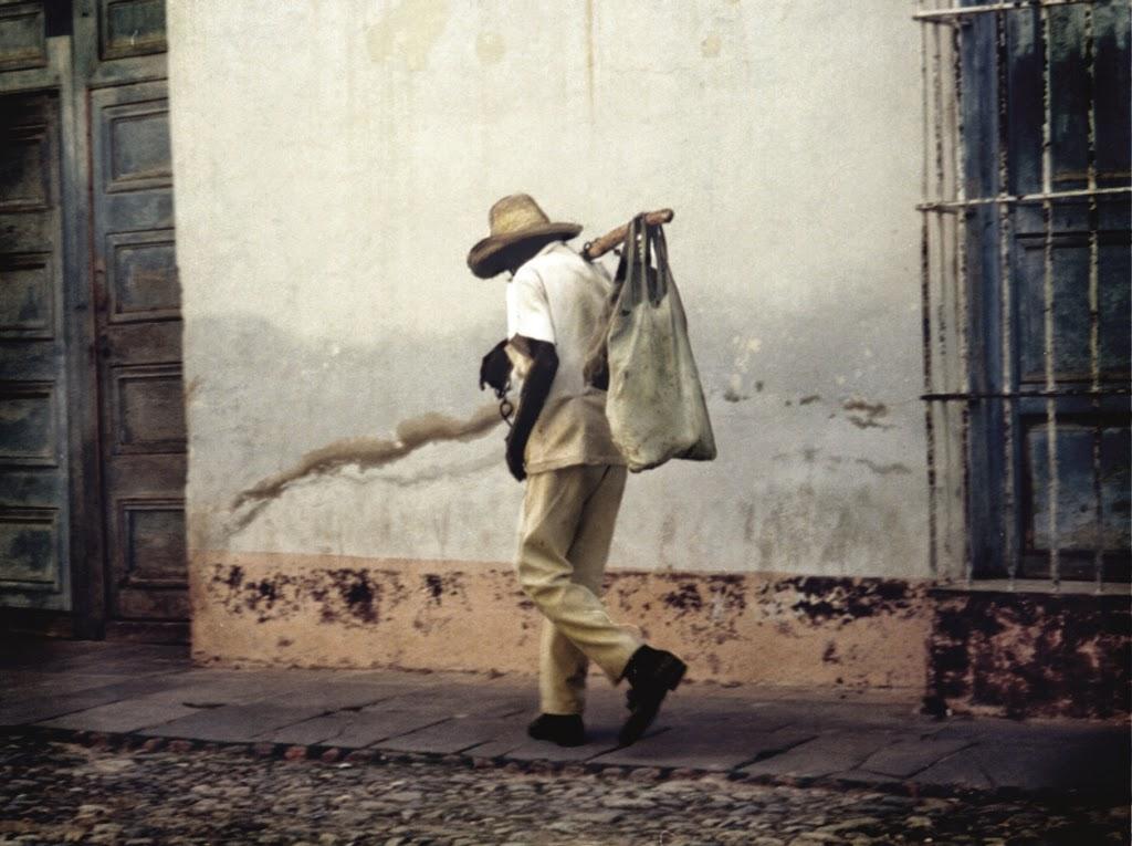 El caminante de Trinidad