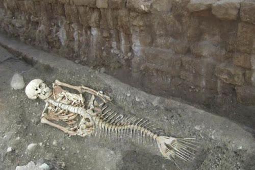 Βρέθηκε ο σκελετός της γοργόνας στον τάφο του Μ. Αλέξανδρου!