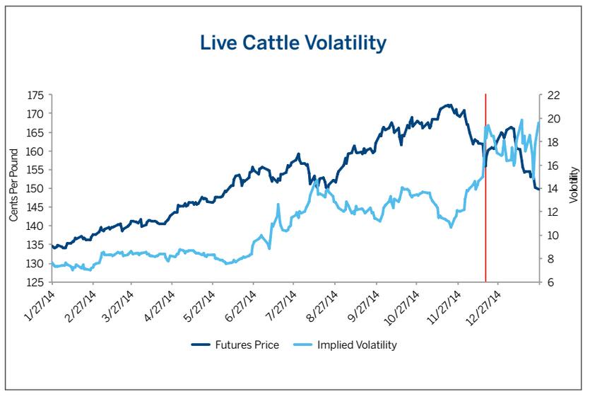 Live Cattle volatility volatilidad futuros vacas