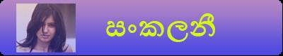 http://apeisawwa.blogspot.com/search/label/%E0%B7%83%E0%B6%82%E0%B6%9A%E0%B6%BD%E0%B6%B1%E0%B7%93