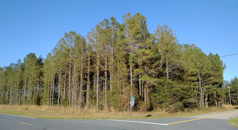 Lake City Land For Sale - 10 acres in Columbia County Florida