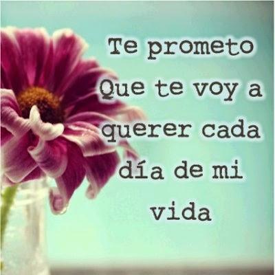 Frases De Amor Te Prometo Que Te Voy A Querer