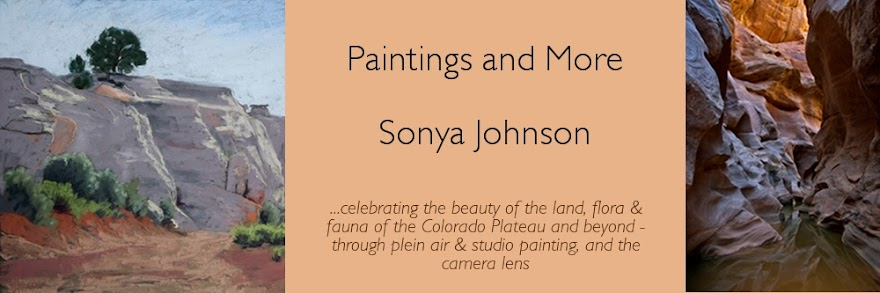 Paintings and More by Sonya