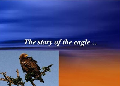the eagle, a lesson from eagle, ppt, motivation, inspirational, success