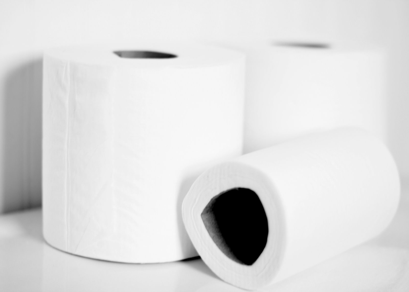 buy cheap toilet paper online Southdragon toilet tissue includes standard size toilet tissue roll and jumbo roll toilet tissue best service and competitive wholesale price.